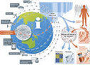 The changing privacy landscape in the era of big data   Bioinformatics Training   Scoop.it