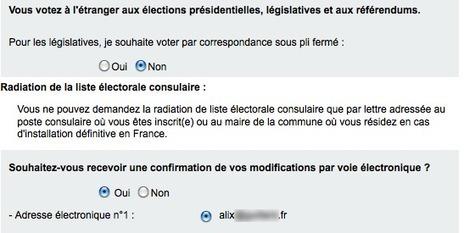 Bientôt les élections (4) et déjà monconsulat - me in Amsterdam | Français à l'étranger : des élus, un ministère | Scoop.it