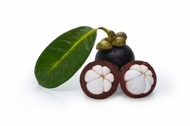 MangoSteen Juice Benefits - Buy Mangosteen Juice USA| China| Australia| Europe | Trending | Scoop.it
