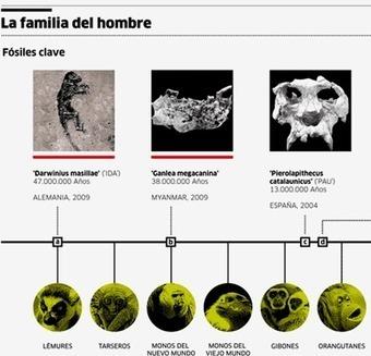 Nuevos descubrimientos sobre la evolución humana | Un cataclismo, tras el origen de la vida en la Tierra | Scoop.it