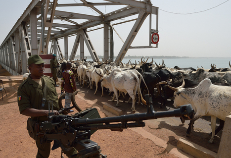 Mali endures in conflict | Best of Photojournalism | Scoop.it