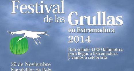 En Navalvillar de Pela, el Festival de las Grullas reunirá el 29 de noviembre a aficionados a la ornitología | GeoActiva Turismo de Aventura | Scoop.it