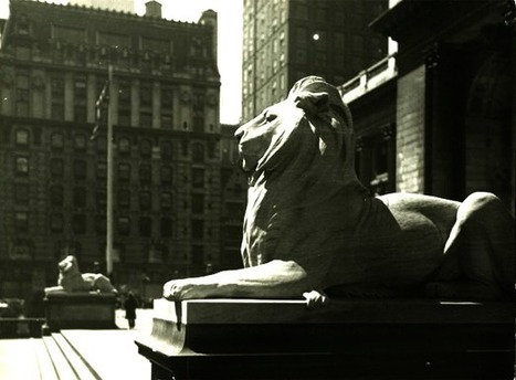 What Big Media Can Learn From the New York Public Library | LibraryLinks LiensBiblio | Scoop.it