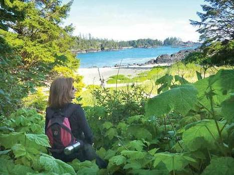 Beachside 'glamping' - North Shore News | Glamping | Scoop.it