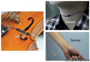 Un capteur sonore ultrasensible inspiré des pattes d'araignée | Ressources pour la Technologie au College | Scoop.it