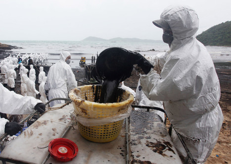#OilSlickSpreads As #Cleanup Continues On #Tourist Island #Thailand #environment #life #PTTglobalChemical Pls Sign below.. | Rescue our Ocean's & it's species from Man's Pollution! | Scoop.it
