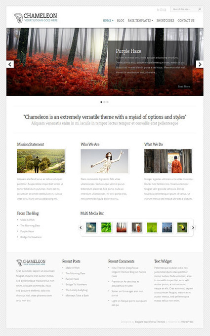 Chameleon Review - Elegant Themes | BEST | WP Tutorials and Tips | Scoop.it