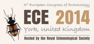 Xe Congrès Européen d'Entomologie (3-8 août 2014) | EntomoNews | Scoop.it