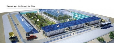 How Electricity, Water And Food Could Be Produced In Desert Areas With Minimal Ecological Footprint | Sustain Our Earth | Scoop.it