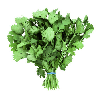 Cilantro: More Than An Herb, It Can Purify Water Too | TIME.com | Erba Volant - Applied Plant Science | Scoop.it