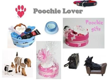 Poochie Lover | Online Dog Shop | Dogs | Scoop.it