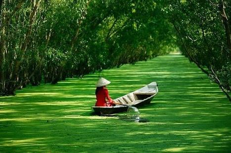 Vietnam-The Haven of Solitude and Peace for Tourists - Gia linh Travel | Gia Linh Travel Co. Ltd | Scoop.it