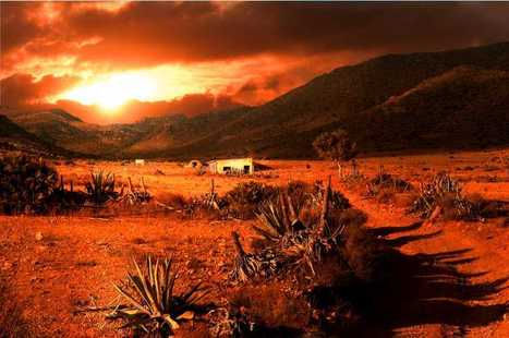 Desertification on the march UN meeting hears   Politics   The Earth Times   Food issues   Scoop.it