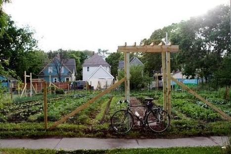 Urban Agriculture Minneapolis Needs Your Voice | Simple, Good and Tasty | Vertical Farm - Food Factory | Scoop.it