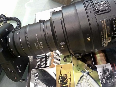 Some Nikon V1 + FT-1 + TC 2.0x + 400mm f/2.8 fun = 2160mm | Topics of my interest | Scoop.it