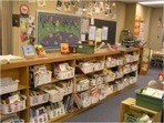 {12 Days: Tool 6} Classroom Library Checklist | Professional development of Librarians | Scoop.it