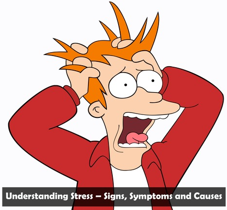 Understanding Stress – Signs, Symptoms and Causes | Disease and Treatment | Scoop.it