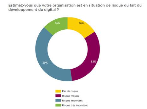 Digital : les entreprises françaises en situation de risque   Marketing digital des laboratoires pharmaceutiques   Scoop.it