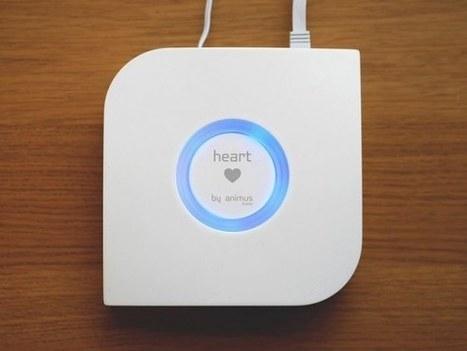 Animus Heart, une box domotique Z-Wave, Bluetooth et RF433MHz - News Domotiques by Domadoo | Objets connectés : Domotique ... Au quotidien | Scoop.it