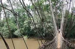 ENVIRONNEMENT : La Guinée a désormais 2000 éco gardes - GuineeConakry.info | TOURISME GUINEE | Scoop.it