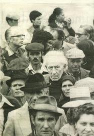 A inocência descompensada: José Gomes Ferreira: a juventude aos 110 anos | Paraliteraturas + Pessoa, Borges e Lovecraft | Scoop.it