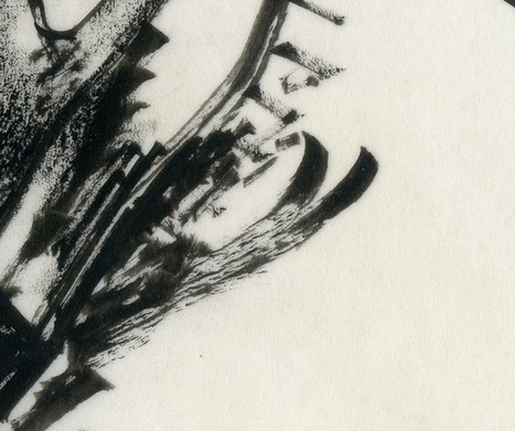 ILLUSTRATION ART | DIBUJO | Scoop.it