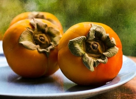 Sweet, Savory and Succulent: 15 Seasonal Persimmon Recipes | Real Deal Food | Scoop.it