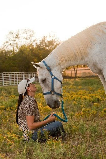 Proposal would brand horses treated with Bute | Chromium | Scoop.it