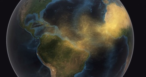 La arena del Desierto del Sáhara fertiliza al Amazonas en Brasil | Reflejos | Scoop.it