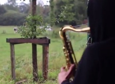 Watch this guy lure cows using his smooth jazz saxophone stylings | Saxophone | Scoop.it