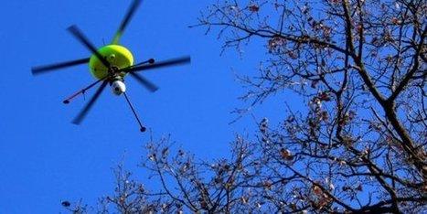 Amazon obtient la permission de tester ses drones aux Etats-Unis | La Transition sociétale inéluctable | Scoop.it