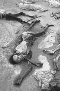 Rwanda | Broken Memory: Rwandan Genocide | Scoop.it