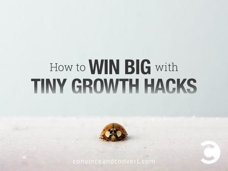 How to Win Big with Tiny Growth Hacks | Social Media, SEO, Mobile, Digital Marketing | Scoop.it