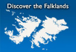 Reaction to Argentine Olympic Advert « Falkland Islands Government News | Race & Crime UK | Scoop.it