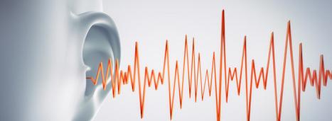 Le bruit coûte au moins 57 milliards d'euros par an à la France | DécoBricoJardin | Scoop.it