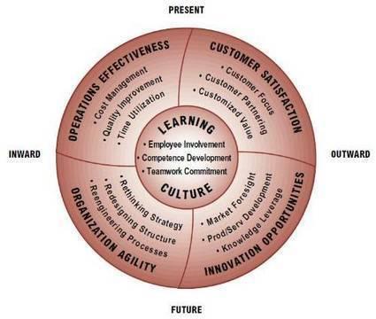 Understanding the Organization Framework   Improving Organizational Effectiveness & Performance   Scoop.it