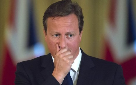#DavidCameron Accused of Sex Act With a Dead Pig - The Daily Beast | News in english | Scoop.it