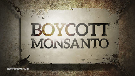 Monsanto's Dirty Dozen: 12 more crimes against humanity and the environment concocted by the world's most evil corporation | Liberty Revolution | Scoop.it
