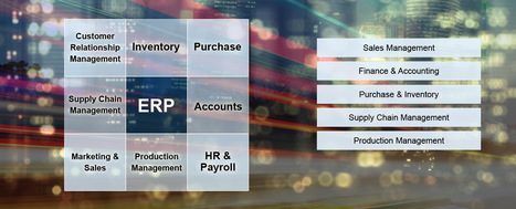 ERP Software Delhi, ERP Software Company in Delhi NCR, ERP Software Free Demo | ERP Software Company | Scoop.it
