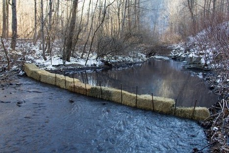 This Is What It Looks Like When 100,000 Gallons Of Coal Waste Spill Into A West Virginia Stream   Sustain Our Earth   Scoop.it
