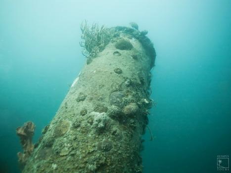 5 Famous Shipwrecks In The Dominican Republic | DiverSync | Scoop.it