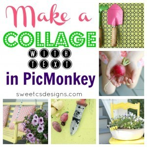 Make a Collage With Text in Picmonkey! | Pinterest and Facebook Tweaking | Scoop.it