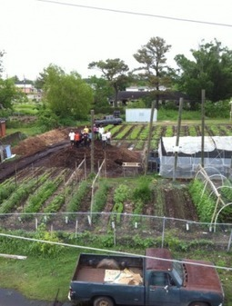 New Orleans school cultivates a generation of forward-thinking farmers | #smartcities | Scoop.it