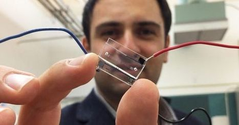 Lab-on-a-Chip: Researchers Track Individual Cells By Assigning Them A Digital Code | Post-Sapiens, les êtres technologiques | Scoop.it