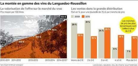 Les raisins, enjeu dumarché viticole en Languedoc | Le Vin et + encore | Scoop.it