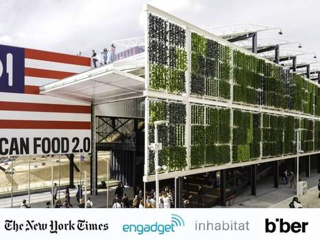 The Evolution of the ZipGrow Farm Wall Design | Bright Agrotech | Vertical Farm - Food Factory | Scoop.it
