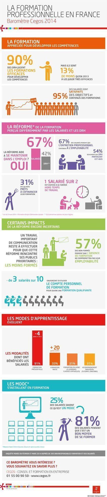 [Infographie] La formation professionnelle en France - Baromètre Cegos 2014 | Ingénierie pédagogique, formation à distance, réseaux sociaux, innovations web | Scoop.it