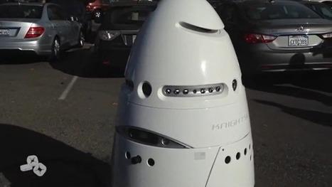 Les robots sont à votre service, les Google Glass prennent l'avion et les enfants font des achats involontaires. | Une nouvelle civilisation de Robots | Scoop.it