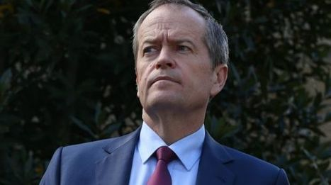 Bill Shorten all but confirms Labor will oppose Malcolm Turnbull's same-sex marriage plebiscite | Gay News | Scoop.it