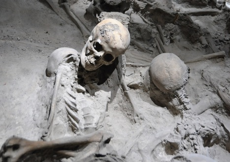 Bones of the victims at Roman Herculaneum | HeritageDaily – Latest ... | Ancient Pompeii and Herculaneum | Scoop.it